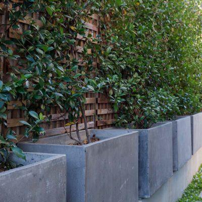 concrete-planters-trellis-stone-path