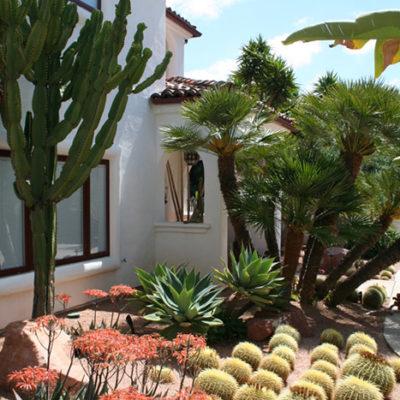 xeriscaping-cactus-natives2