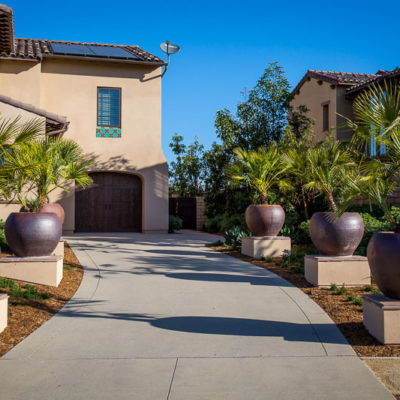 large planters-driveway-palm trees