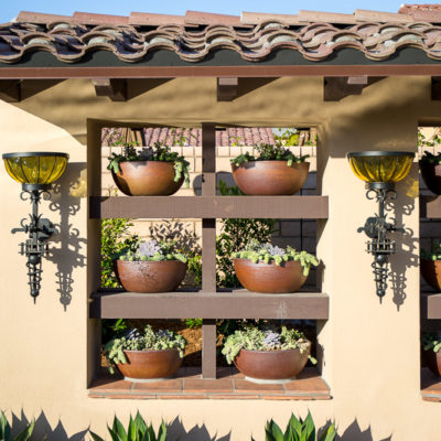 succulents-potted plant feature wall